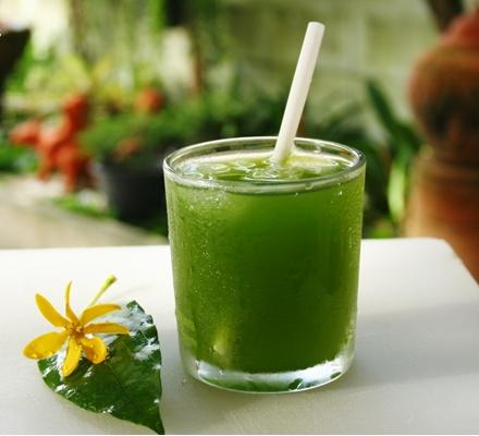 The Newest Healthy Drink - Chlorophyll Water | Pharmacy 11550